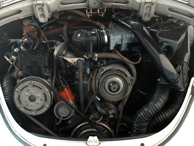 VW TYPE-1 GLORY BEETLE