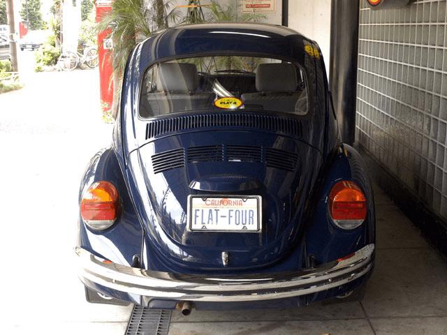 MEXICO Cal-Look